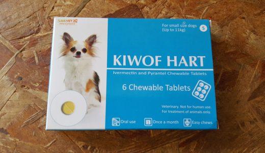 【多頭飼い】犬、猫ののためのフィラリア薬をご紹介!