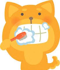 【犬・猫】歯周病の薬を通販で購入してみた効果は?